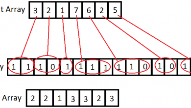 کروموزوم در الگوریتم ژنتیک