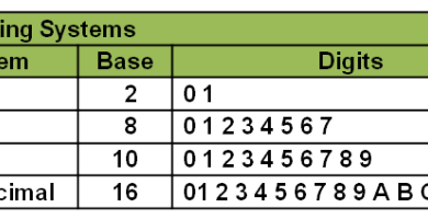 نمایش مبنای ۸ و مبنایی ۱۶ کروموزوم در الگوریتمهای ژنتیک